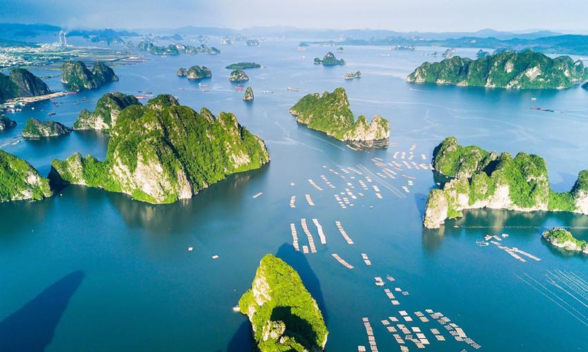 越南日益受到国际游客的青睐