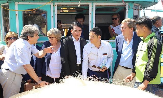 欧洲议会渔业委员会代表团考察海防市