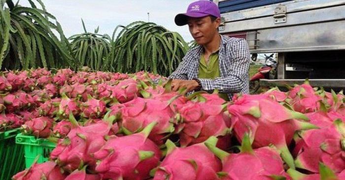 越南致力打造农产品品牌 通过正贸方式开拓中国市场
