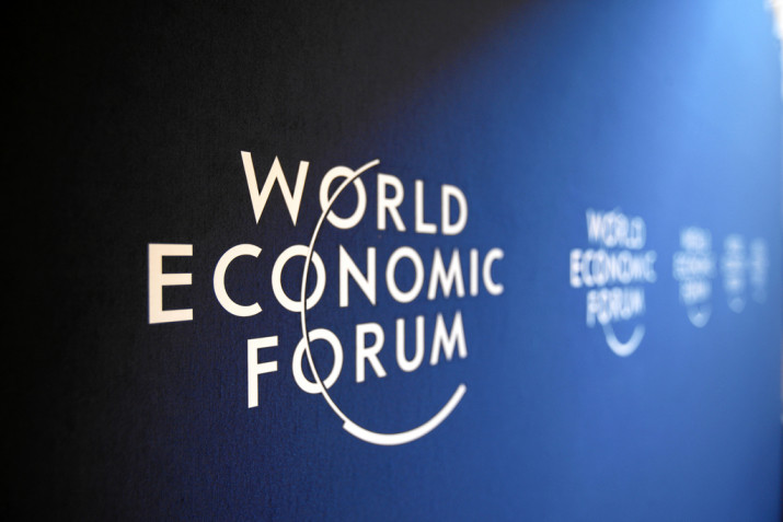 WEF将与越南合作展开一些重要项目