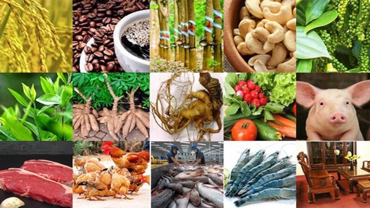 越南发布13个国家拳头农产品名单