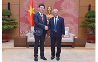 中国和裁会代表团访越