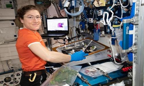 美宇航员有望成为全球单次航天飞行时间最久的女性
