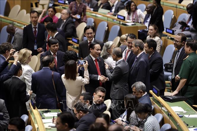 越南:致力于可持续和平的信任伙伴