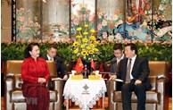 越南国会主席阮氏金银会见中国江苏省省委书记