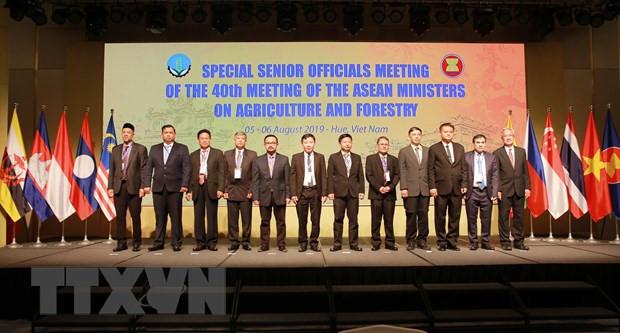 东盟与中日韩农林业高官会举行