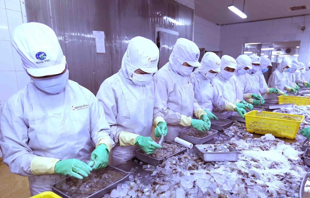 芹苴大学和日本公司成功研发以虾壳为原料的食品原料生产规程