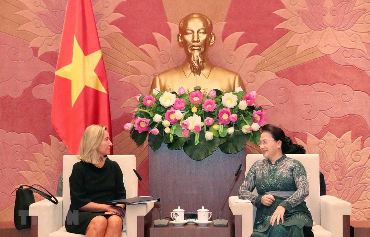 越南一向将欧盟视为首要合作伙伴