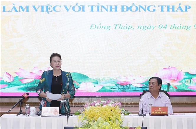 越南国会主席阮氏金银视察同塔省