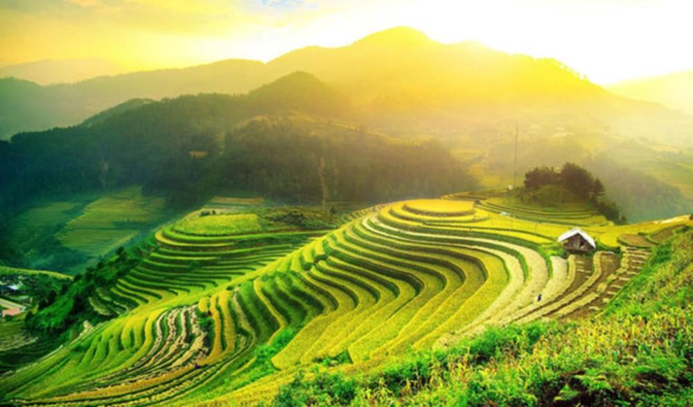2019年黄树皮县梯田旅游文化周:2019年越南茶艺师比赛
