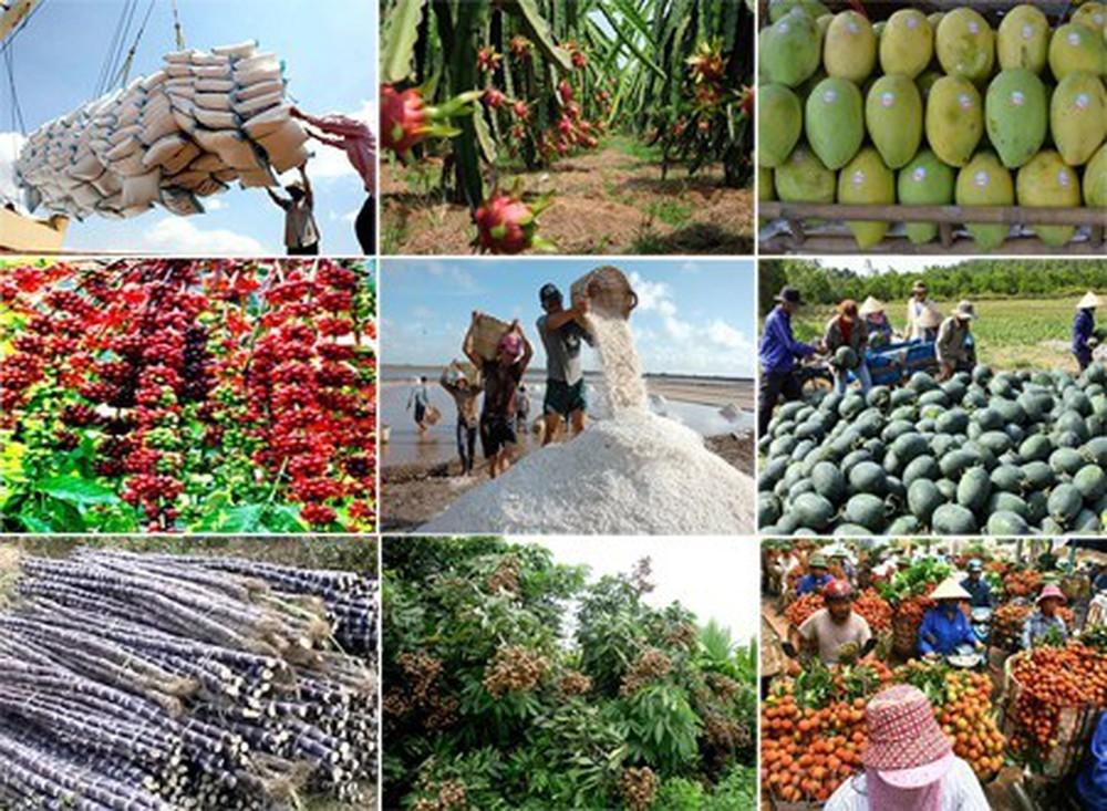 CPTPP和EVFTA协定激发越南农业爆发力