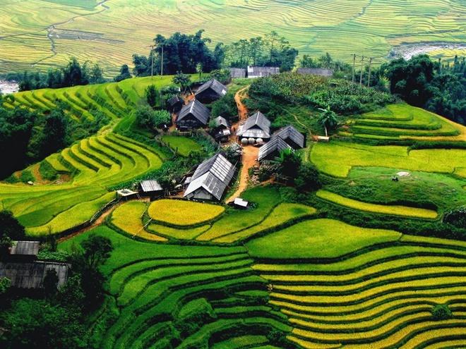 越南囊获世界级权威奖项