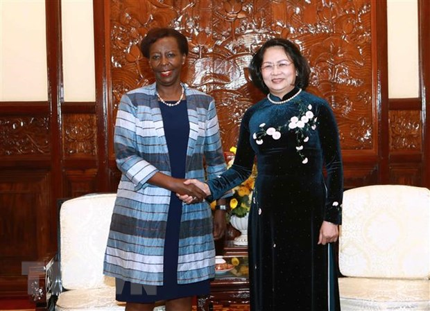 越南与法语国家及地区国际组织之间的合作日益向前发展