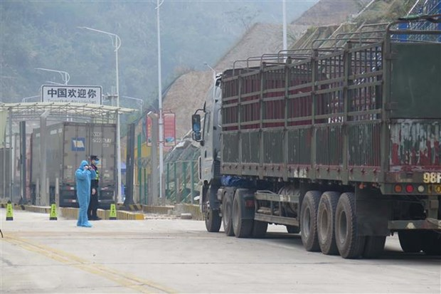 谅山省恢复边民贸易活动