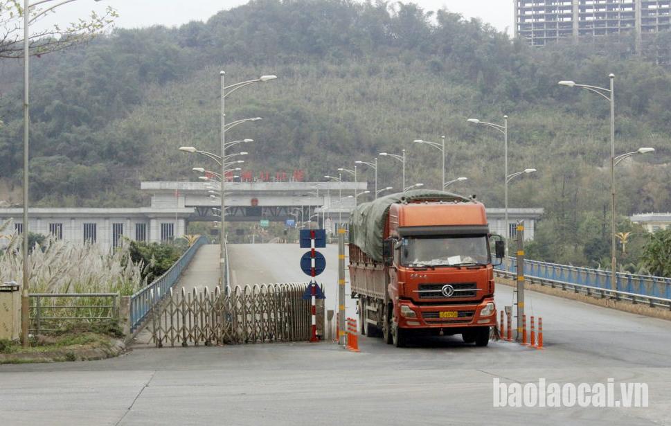 越南2000吨火龙果获得清关输往中国