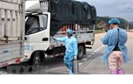 越中探讨共同抗击疫情及恢复双边经贸活动的措施