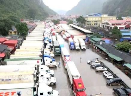工贸部建议政府允许恢复越中边境省级口岸通关