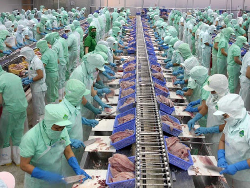 新冠肺炎疫情期间促进农业生产以满足国内和出口需求