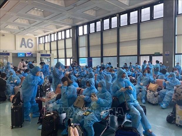 将身在中国台湾的约340名越南公民安全接送回国