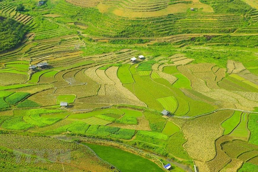 越南西北山区的迷人风光
