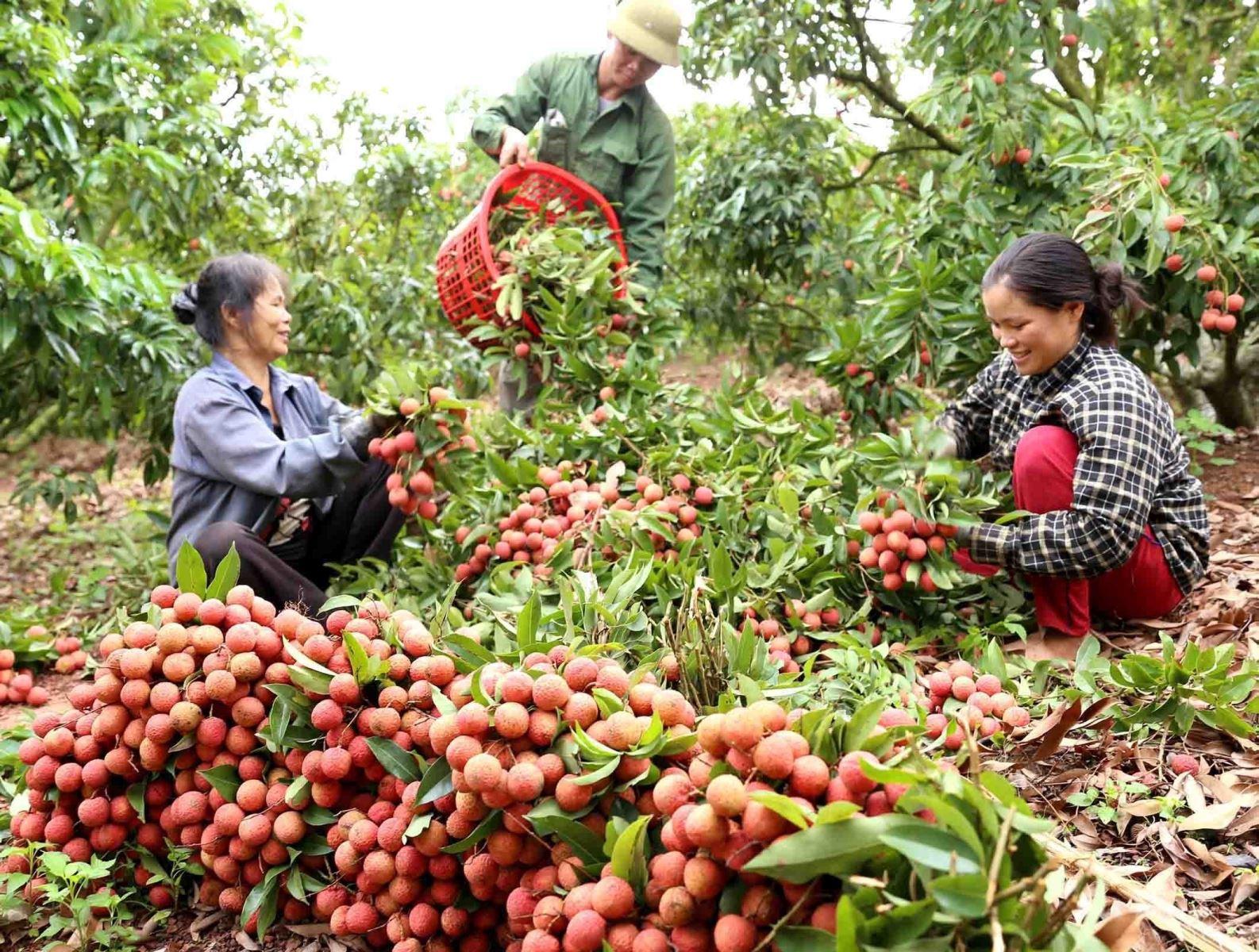 60家企业将参加越中农产食品在线交易会