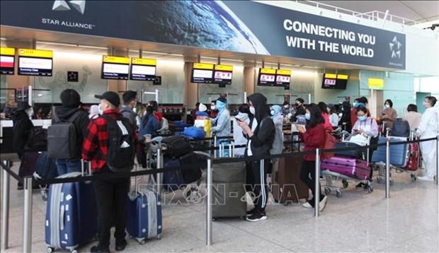 越南将在英国的340名公民安全接送回国
