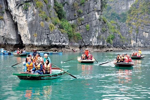 前7个月越南接待国际游客量同比下降61.6%