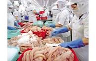 越南12家企业获准恢复向沙特阿拉伯出口捕捞水产