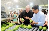 加快对越南输美水果的检疫进度