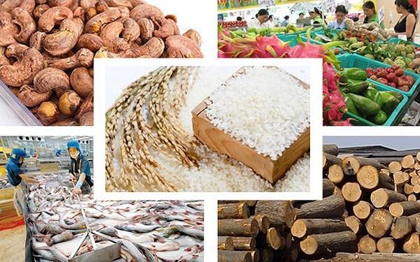 2020年前三季度越南商品出口额保持正增长
