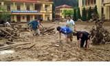 海外越南人心系中部灾区