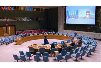 越南呼吁国际社会为维护中非和平与稳定提供支持