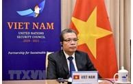 越南参加联合国安理会海湾地区局势部长级会议