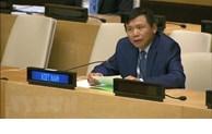 越南承诺为强化国家和国际层面的法治作出贡献