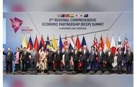 RCEP协定谈判国呼吁印度重返协定谈判桌