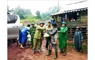越南政府总理就克服暴雨洪水后果及应对第7号台风工作作出指示