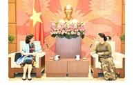国会主席阮氏金银会见古巴驻越南大使利亚尼斯·托雷斯·里维拉
