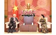 越南继续支持并推进东盟与俄罗斯的战略伙伴关系