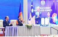 2020年越南的多边外交烙印