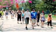 12月份越南接待国际游客量约达1.63万人次