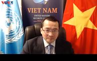 越南主持召开联合国安理会南苏丹问题委员会视频会议