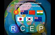 日本内阁会议通过RCEP批准案