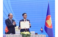 """乌克兰驻越南临时代办:2020年越南已出色完成""""双重重任"""""""