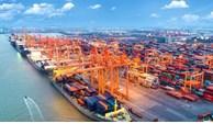 越南新建8个海港   海港总数增至286个