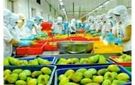 中国是越南蔬果最大的出口市场