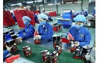 促进欧亚经济联盟框架内越南与俄罗斯投资合作的新机遇