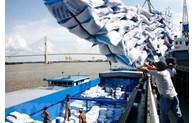 越南稳步向菲律宾出口大米的机会