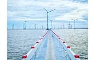 国际金融公司向越南风电项目提供贷款