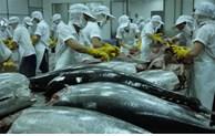 4月份越南金枪鱼出口额猛增