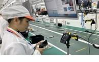 胡志明市主要工业领域增势良好